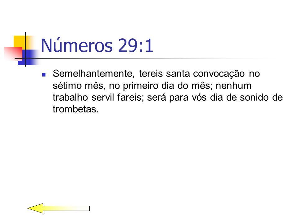 Números 29:1