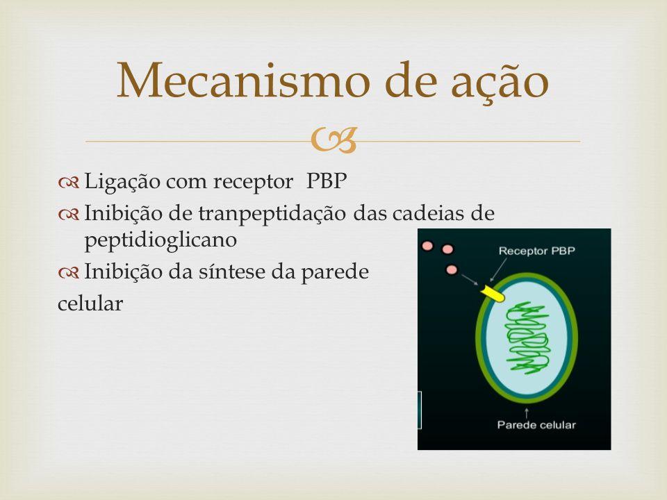 Mecanismo de ação Ligação com receptor PBP