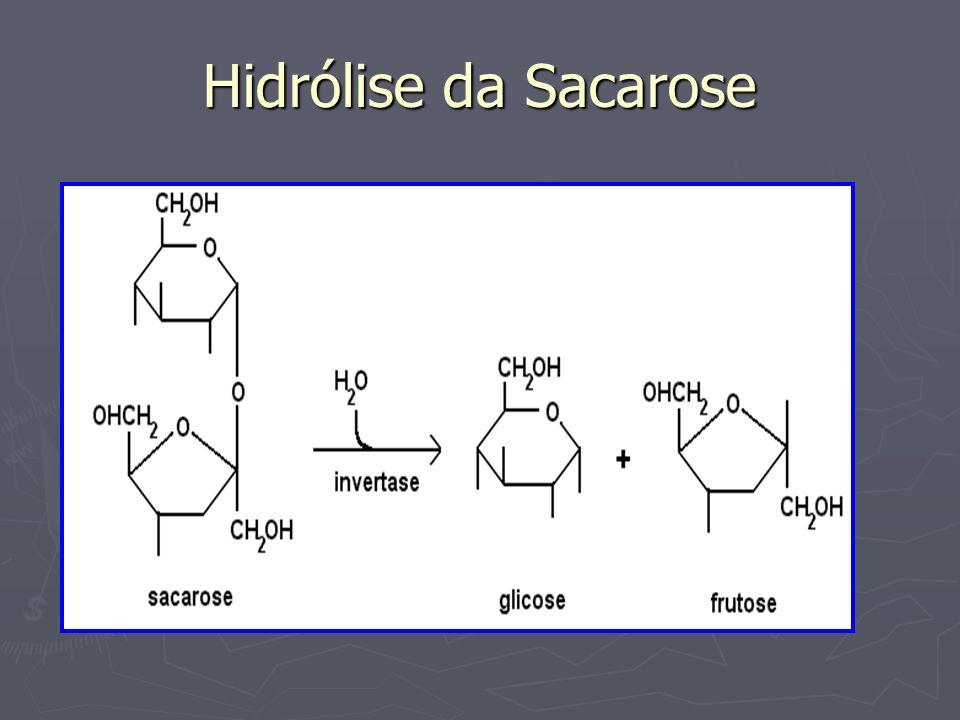 Hidrólise da Sacarose