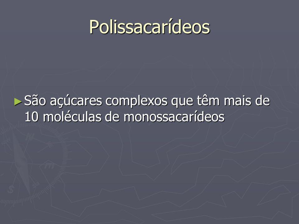 Polissacarídeos São açúcares complexos que têm mais de 10 moléculas de monossacarídeos