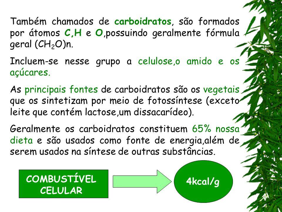 Também chamados de carboidratos, são formados por átomos C,H e O,possuindo geralmente fórmula geral (CH2O)n.