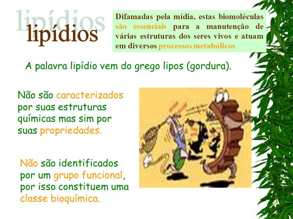 lipídios A palavra lipídio vem do grego lipos (gordura).