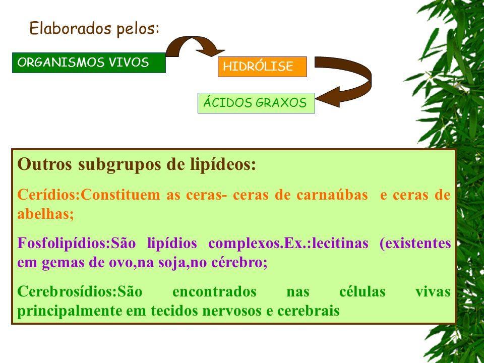 Outros subgrupos de lipídeos: