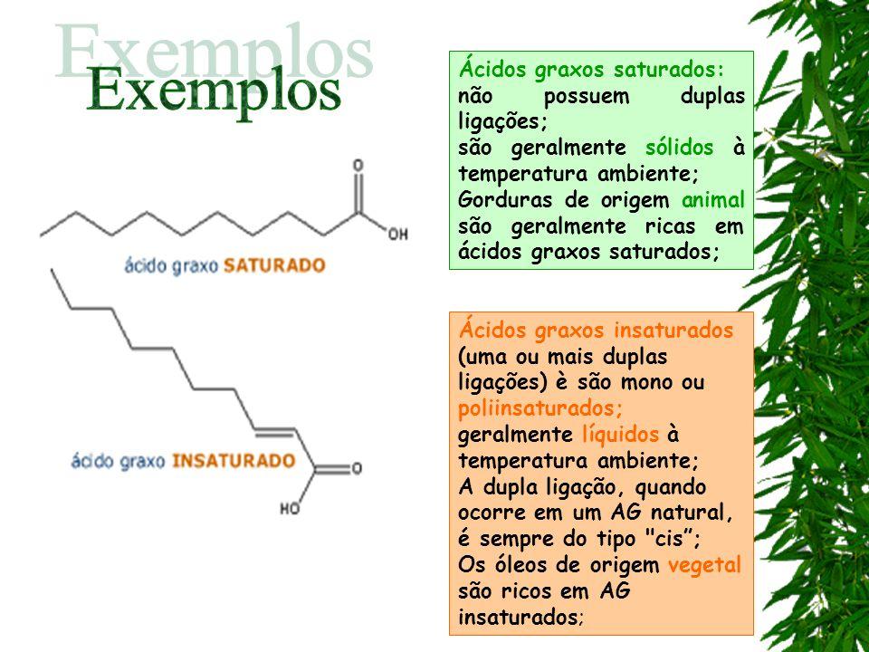 Exemplos Ácidos graxos saturados: não possuem duplas ligações;
