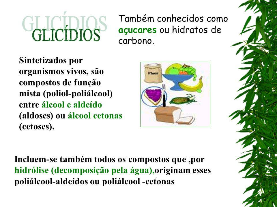 GLICÍDIOS Também conhecidos como açucares ou hidratos de carbono.