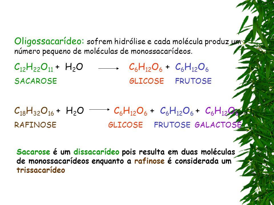 Oligossacarídeo: sofrem hidrólise e cada molécula produz um número pequeno de moléculas de monossacarídeos.