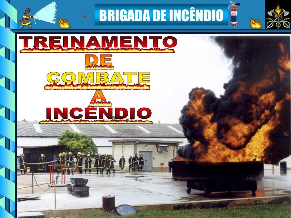 TREINAMENTO DE COMBATE À INCÊNDIO