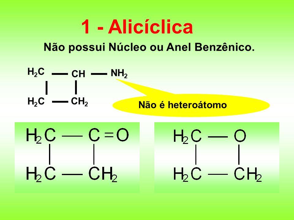 1 - Alicíclica Não possui Núcleo ou Anel Benzênico. H2C NH2 CH CH2