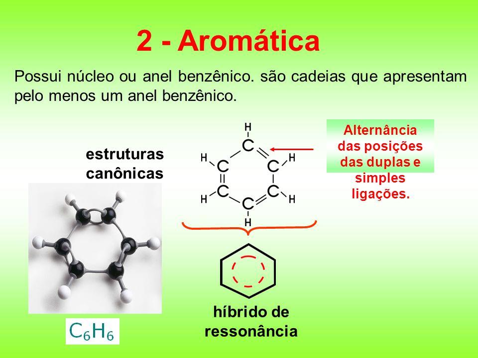 2 - Aromática Possui núcleo ou anel benzênico. são cadeias que apresentam pelo menos um anel benzênico.