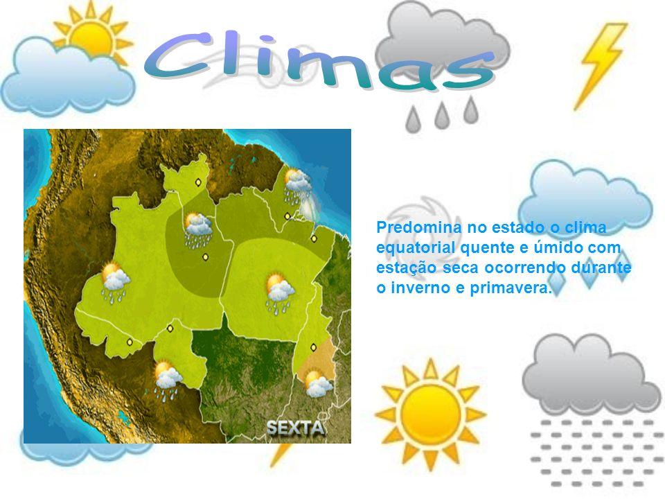 Climas Predomina no estado o clima equatorial quente e úmido com estação seca ocorrendo durante o inverno e primavera.