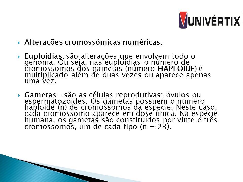 Alterações cromossômicas numéricas.