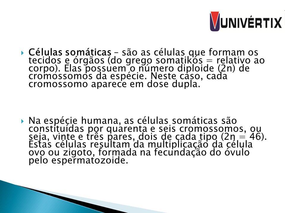 Células somáticas – são as células que formam os tecidos e órgãos (do grego somatikós = relativo ao corpo). Elas possuem o número diploide (2n) de cromossomos da espécie. Neste caso, cada cromossomo aparece em dose dupla.