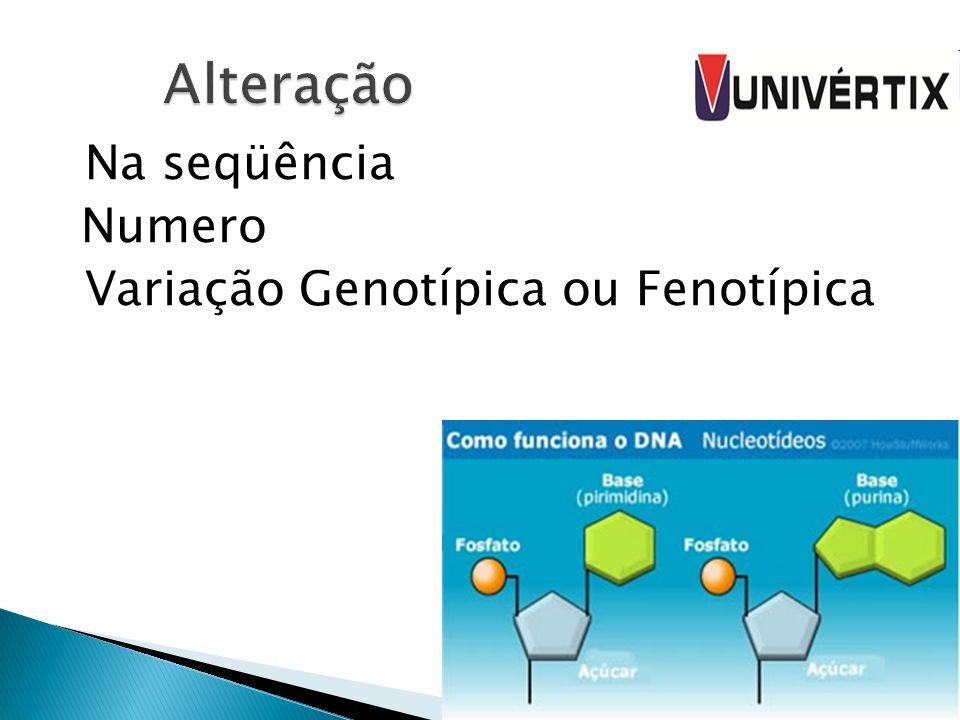 Alteração Na seqüência Numero Variação Genotípica ou Fenotípica