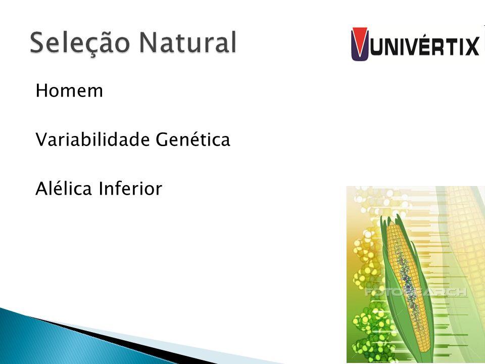 Seleção Natural Homem Variabilidade Genética Alélica Inferior