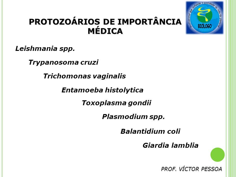 PROTOZOÁRIOS DE IMPORTÂNCIA MÉDICA