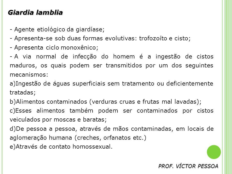 Giardia lamblia Agente etiológico da giardíase;