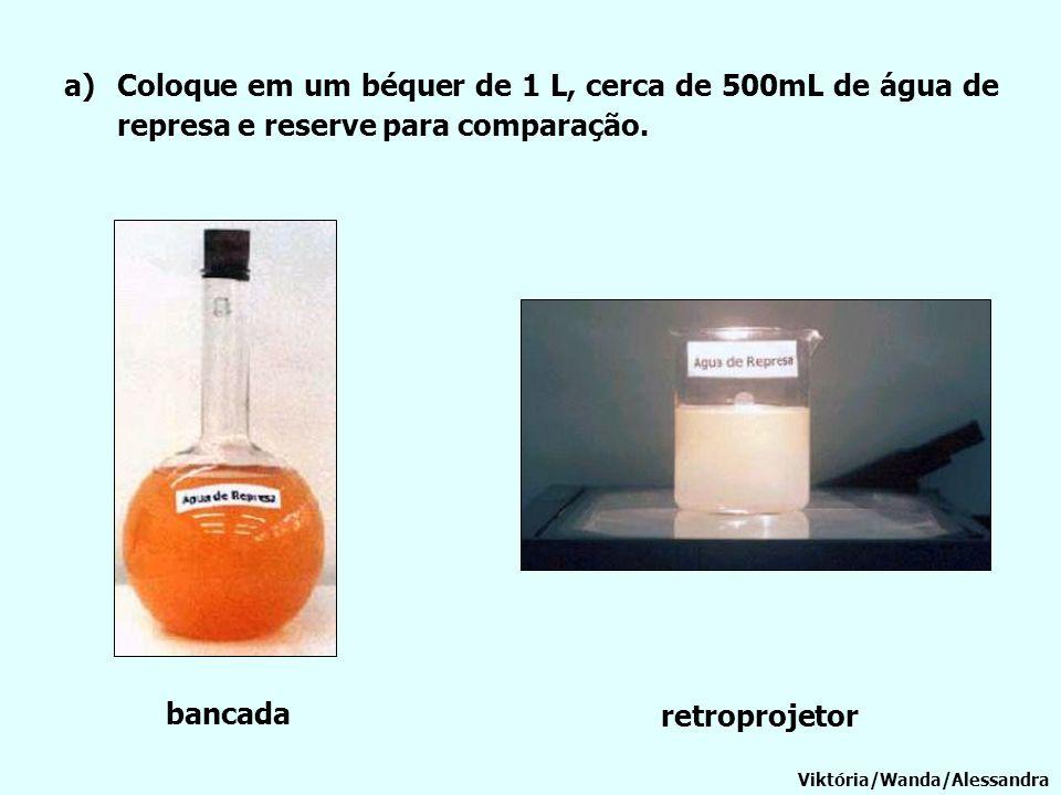 Coloque em um béquer de 1 L, cerca de 500mL de água de represa e reserve para comparação.