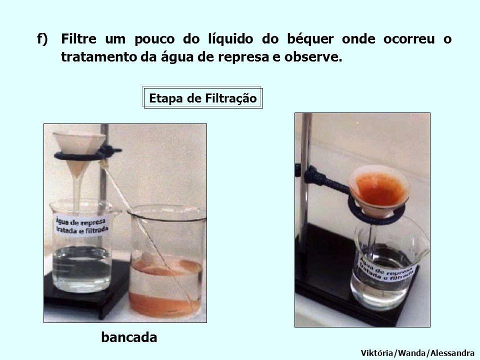 Filtre um pouco do líquido do béquer onde ocorreu o tratamento da água de represa e observe.