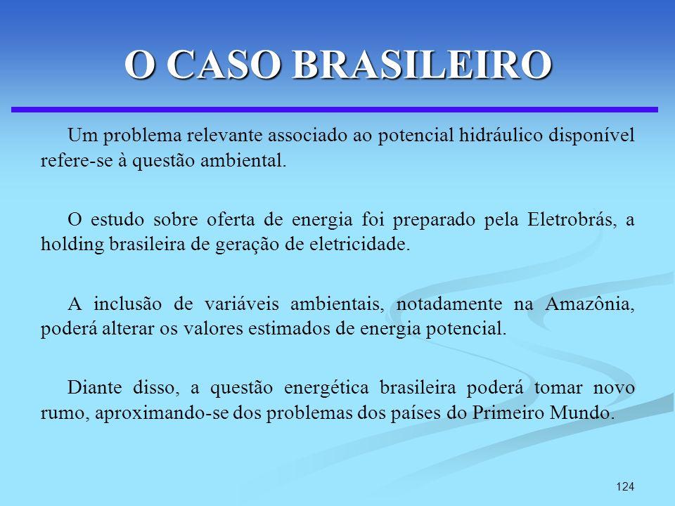 O CASO BRASILEIRO Um problema relevante associado ao potencial hidráulico disponível refere-se à questão ambiental.