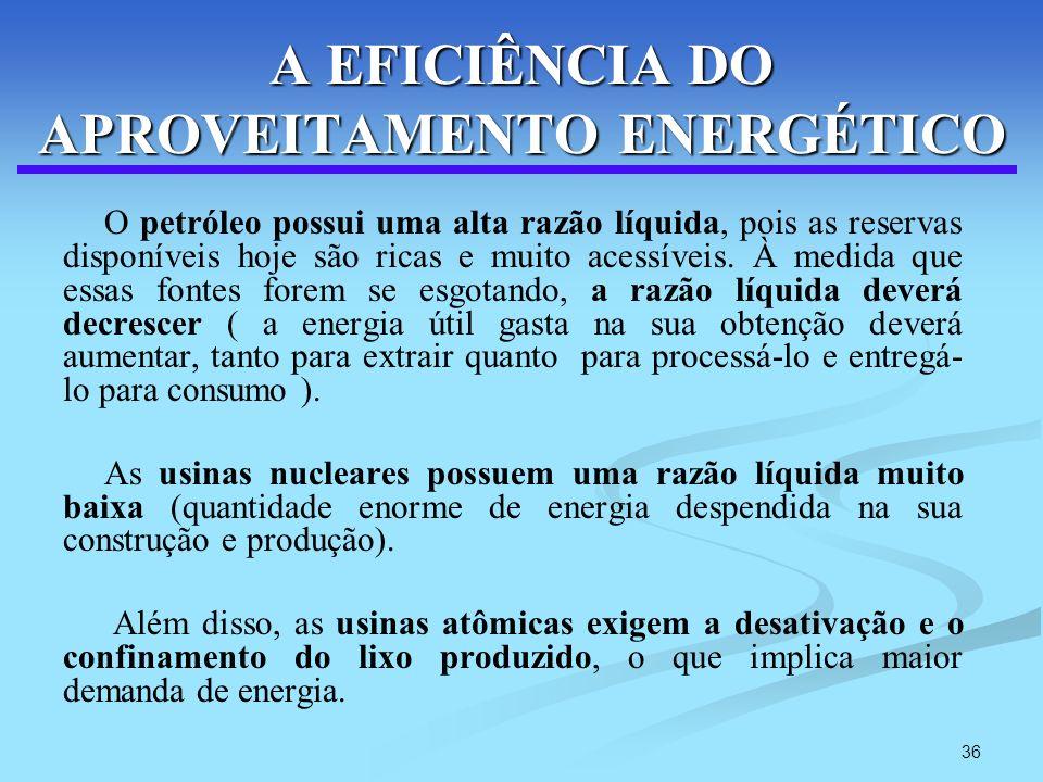 A EFICIÊNCIA DO APROVEITAMENTO ENERGÉTICO