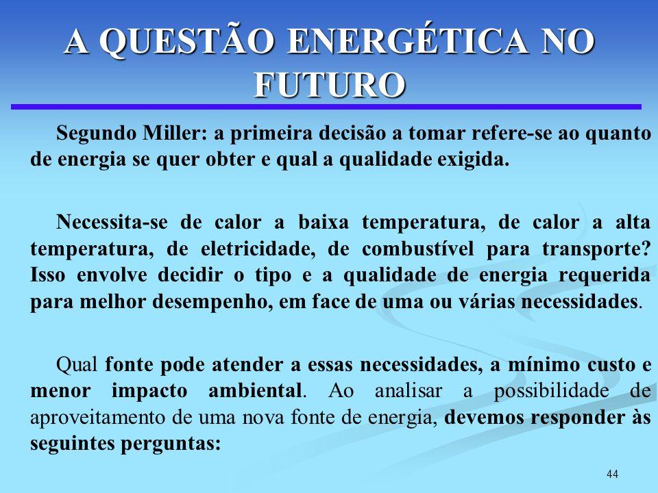 A QUESTÃO ENERGÉTICA NO FUTURO