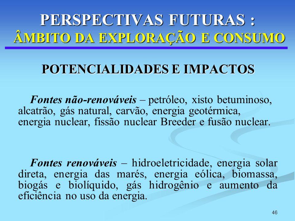 PERSPECTIVAS FUTURAS : ÂMBITO DA EXPLORAÇÃO E CONSUMO