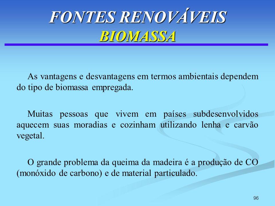 FONTES RENOVÁVEIS BIOMASSA