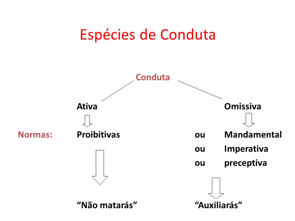 Espécies de Conduta Conduta Ativa Omissiva