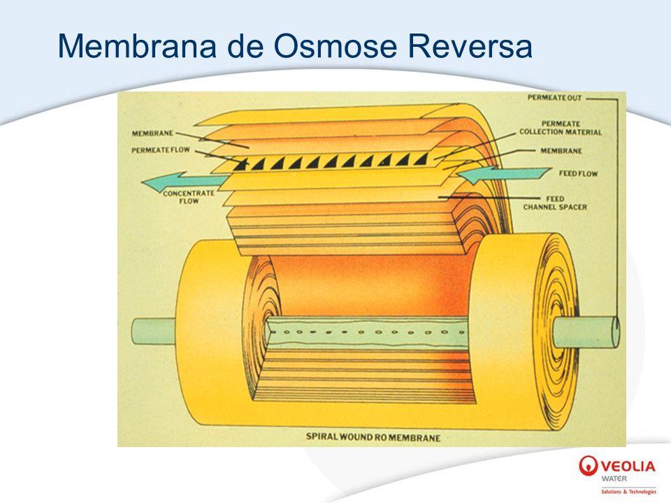 Membrana de Osmose Reversa