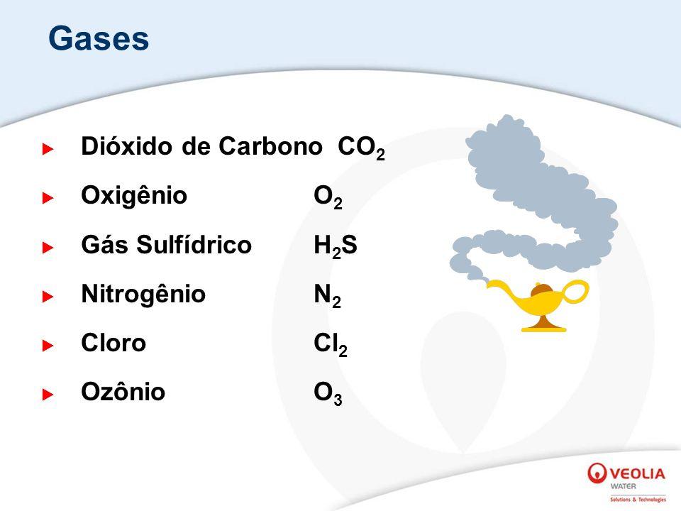 Gases Dióxido de Carbono CO2 Oxigênio O2 Gás Sulfídrico H2S