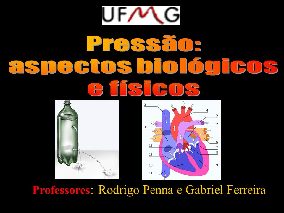 Professores: Rodrigo Penna e Gabriel Ferreira