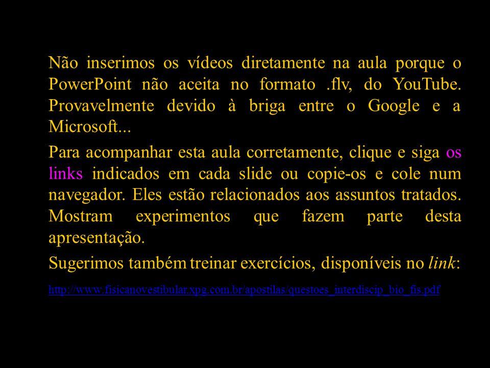 Não inserimos os vídeos diretamente na aula porque o PowerPoint não aceita no formato .flv, do YouTube. Provavelmente devido à briga entre o Google e a Microsoft...