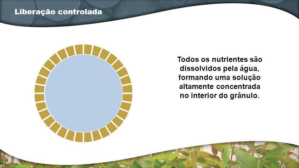 Liberação controlada Todos os nutrientes são dissolvidos pela água, formando uma solução altamente concentrada no interior do grânulo.