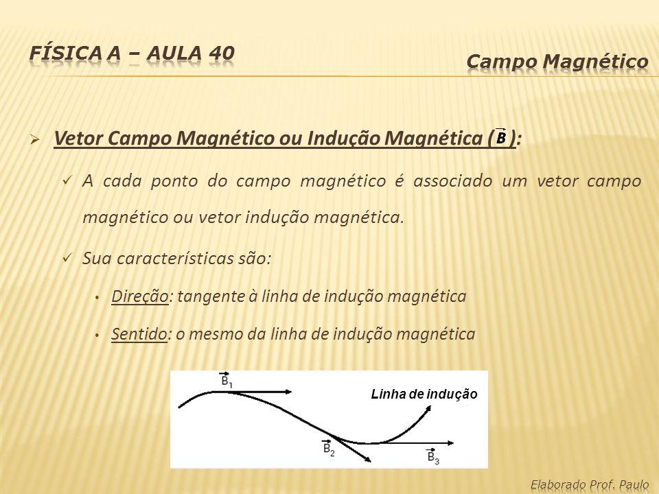 Vetor Campo Magnético ou Indução Magnética ( ):