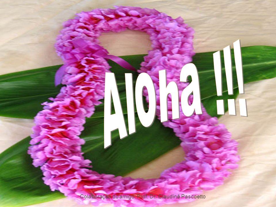 Aloha !!! Colaboração do amigo: Prof. Dr. Claudinê Pascoetto
