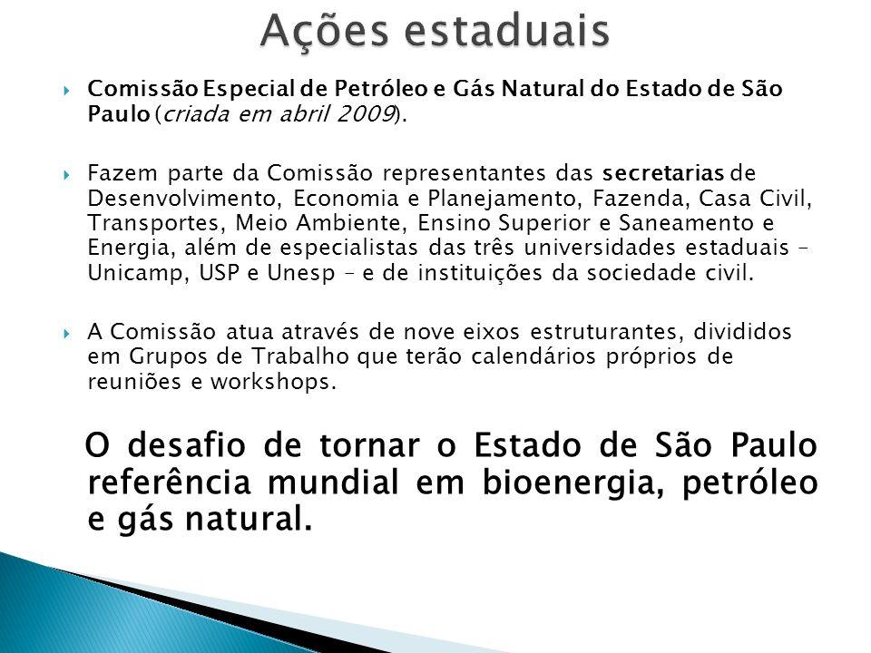 Ações estaduais Comissão Especial de Petróleo e Gás Natural do Estado de São Paulo (criada em abril 2009).
