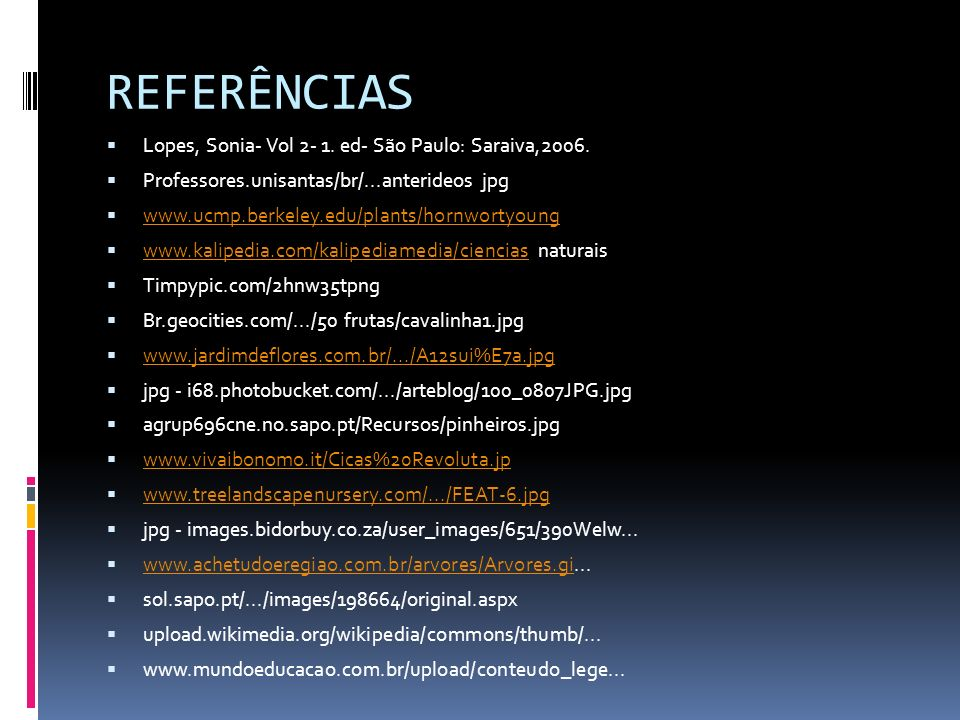 REFERÊNCIAS Lopes, Sonia- Vol 2- 1. ed- São Paulo: Saraiva,2006.