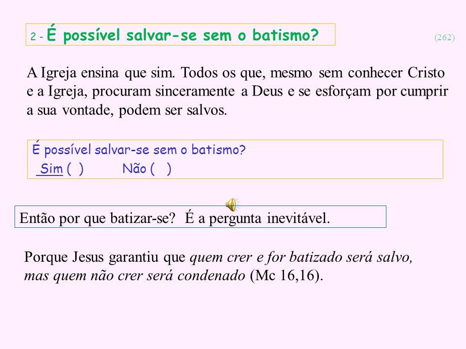Então por que batizar-se É a pergunta inevitável.