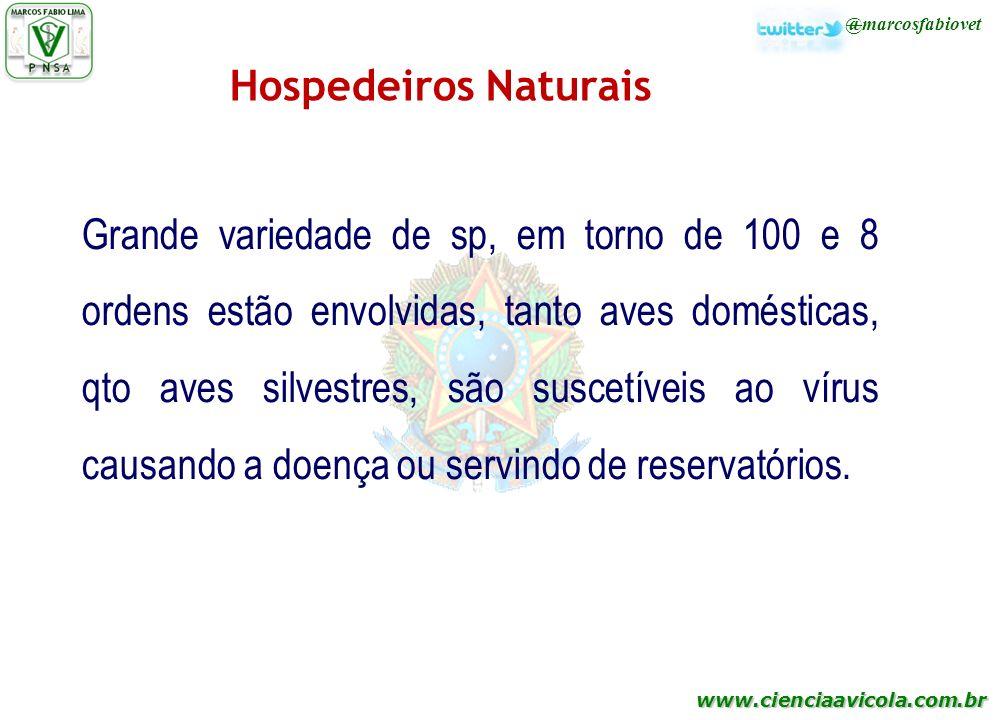 Hospedeiros Naturais