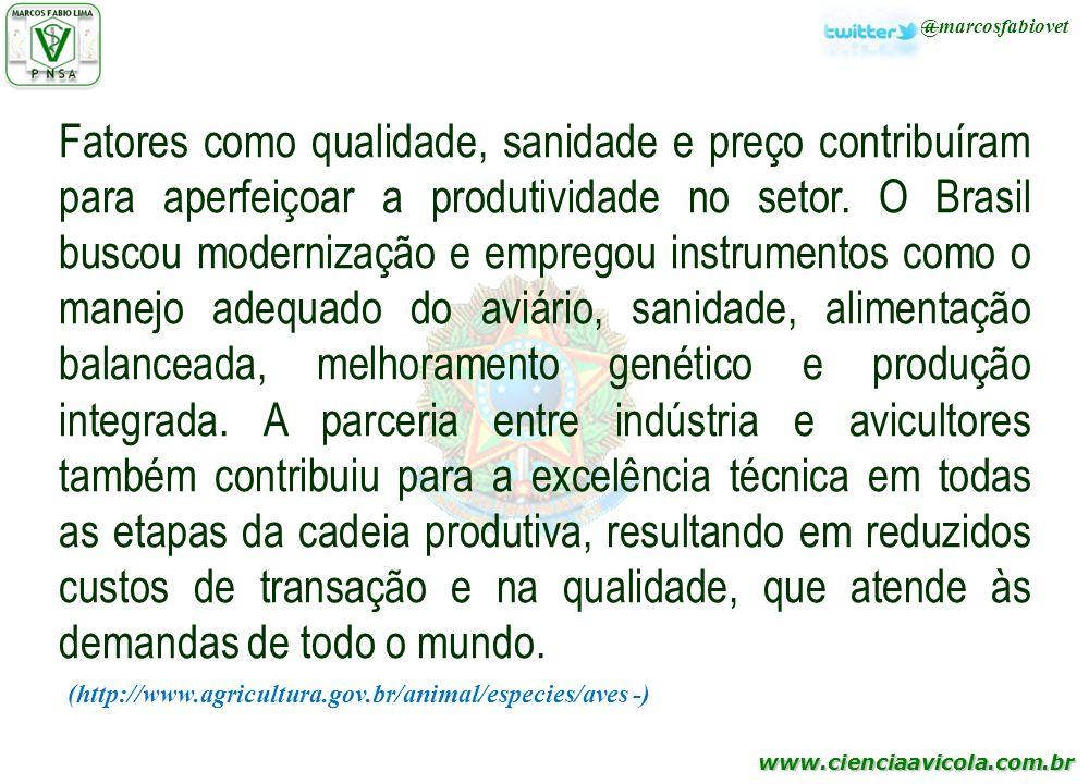 Fatores como qualidade, sanidade e preço contribuíram para aperfeiçoar a produtividade no setor. O Brasil buscou modernização e empregou instrumentos como o manejo adequado do aviário, sanidade, alimentação balanceada, melhoramento genético e produção integrada. A parceria entre indústria e avicultores também contribuiu para a excelência técnica em todas as etapas da cadeia produtiva, resultando em reduzidos custos de transação e na qualidade, que atende às demandas de todo o mundo.