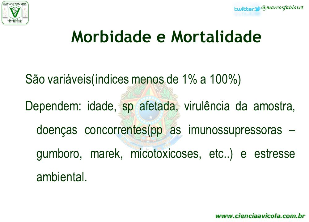 Morbidade e Mortalidade