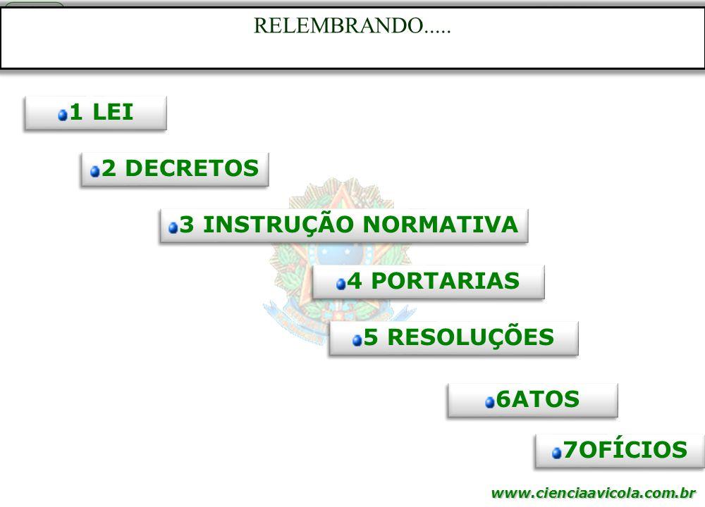 RELEMBRANDO..... 1 LEI 2 DECRETOS 3 INSTRUÇÃO NORMATIVA 4 PORTARIAS