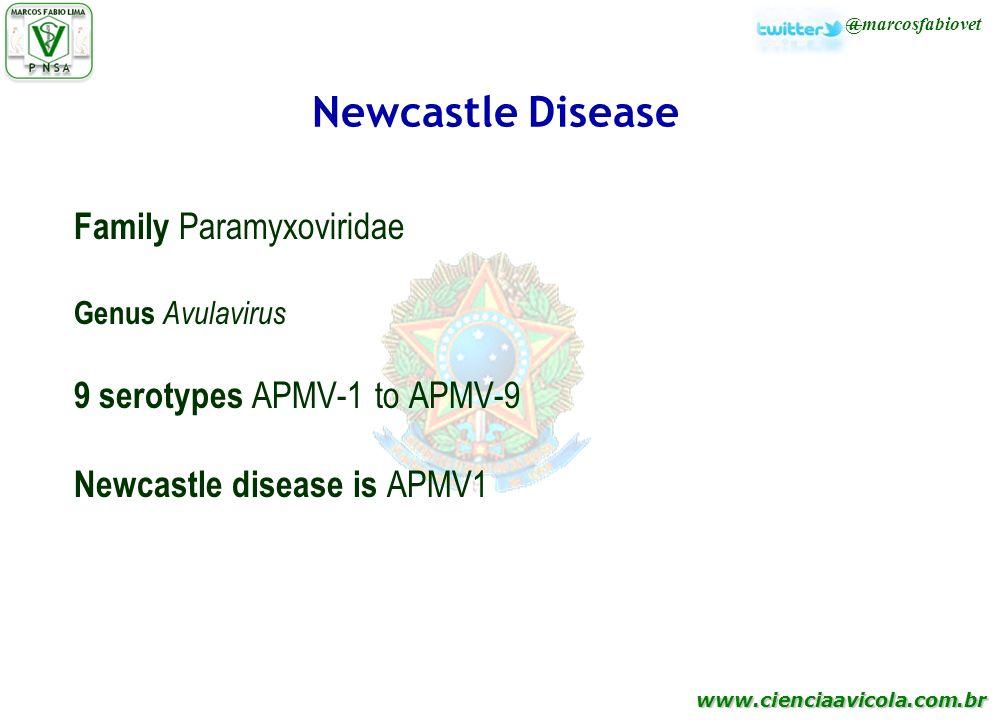 Newcastle Disease Family Paramyxoviridae 9 serotypes APMV-1 to APMV-9