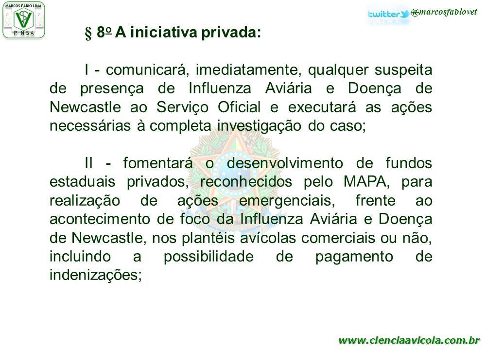 § 8o A iniciativa privada: