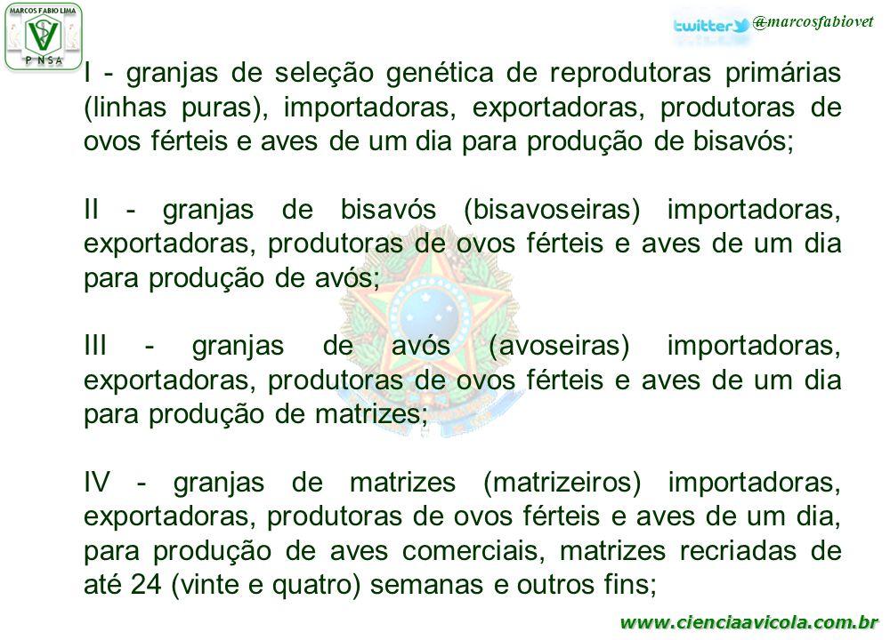 I - granjas de seleção genética de reprodutoras primárias (linhas puras), importadoras, exportadoras, produtoras de ovos férteis e aves de um dia para produção de bisavós;