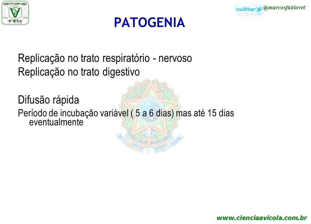 PATOGENIA Replicação no trato respiratório - nervoso