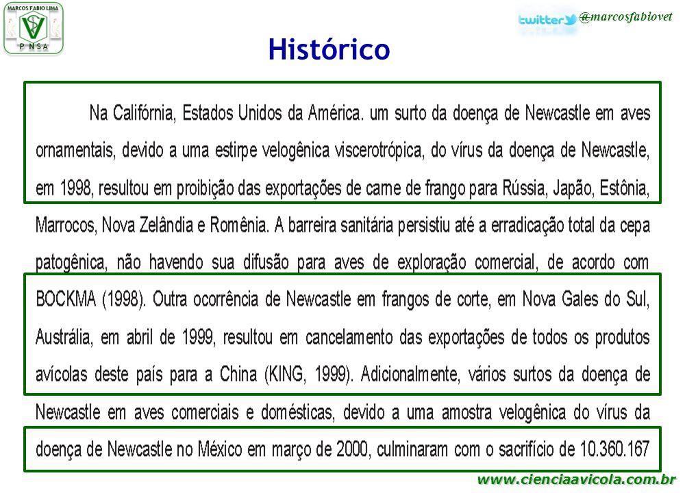 Histórico 25
