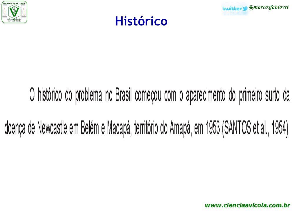 Histórico 26