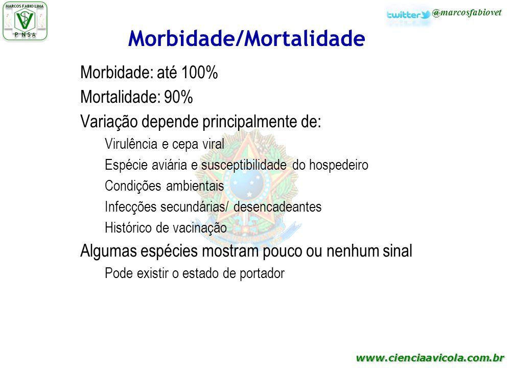 Morbidade/Mortalidade