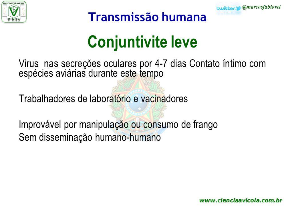 Conjuntivite leve Transmissão humana